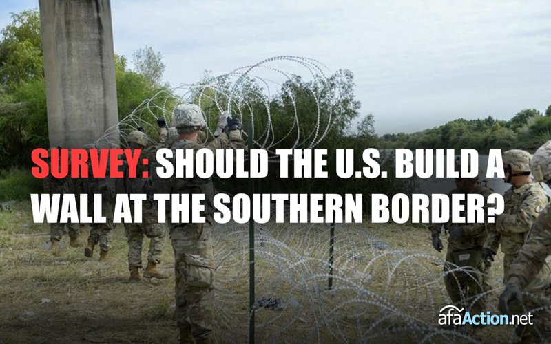 Should President Trump build a wall at the southern border?