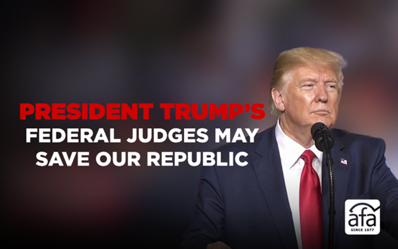 President Trump's federal judges may save our republic
